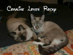 Coraline loves Rocky